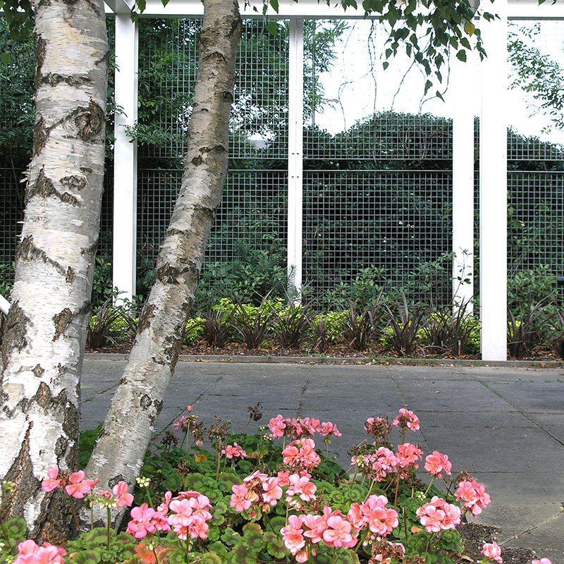 Grating - Plant Trellis - Green Wall - Piazza-132 | Lang+Fulton