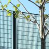 Novara-25_Rokeby_School_grating_fence_15
