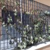 Verona-black-plant-trellis