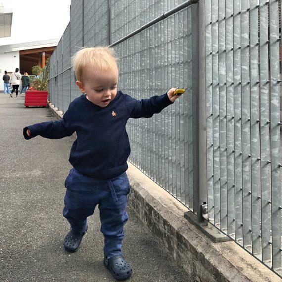 Novara-034-anti-climb-grating-fence-Hitherfield-School-01